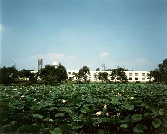 百周年記念公園