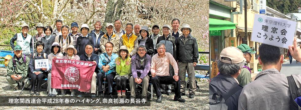 理窓関西連合平成28年春のハイキング、奈良初瀬の長谷寺